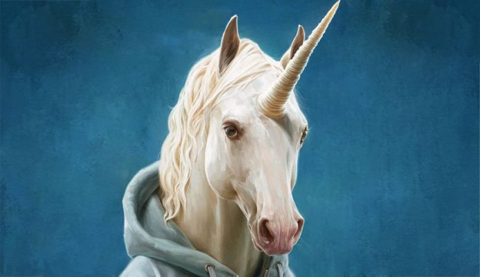 Find your business unicorn
